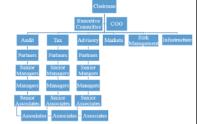 Kpmg Organizational Structure Chart Kpmg Consultancy Firm Business Analysis