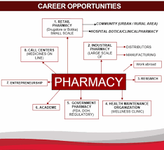 Organizational Chart Of A Drugstore Bachelor Of Science In Pharmacy Metropolitan Medical Center