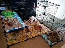 making rabbit cages diy rabbit housing hollys hollands rabbitry