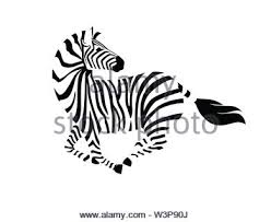 African Zebra Running With Head Looks Back Side View Cartoon Animal