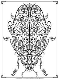 Small Picture Printable Bugs Coloring Pages For Adults Realistic Coloring Pages