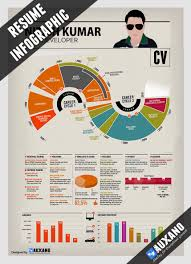 Resume Services Awesome Infographic Resume for job Success 55