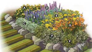 Small Picture Garden Plans Zone 5 How To Landscape A Shady Yard DIY Zone 5