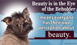 Beauty Is In The Eye Of The Beholder Quote Origin Best Of What Does The Phrase 'Beauty Is In The Eye Of The Beholder' Mean