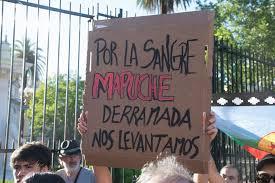 Resultado de imagen para El asesinato de Rafael Nahuel y la represión en la Patagonia