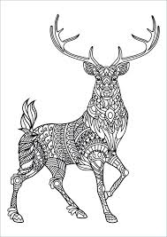Collection Of Intricate Animal Coloring Pages Download Them And