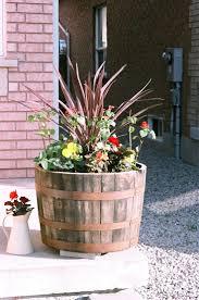 Planters, Oak Barrel Planters Half Whiskey Barrel Planters Whiskey Barrel Planter  Ideas Only On Pinterest