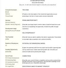 Executive Summary Outline Executive Summary Outline Examples Format Free Executive