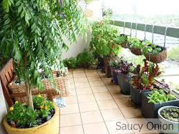 Kitchen Gardening Apartement Apartment Balcony Vegetable Garden Decorating Ideas