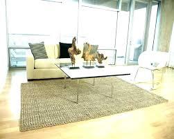 sisal vs jute sisal jute sisal rugs rug reviews vs large size of coffee chenille in