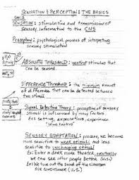 best ap psychology ideas cognitive psychology  sensation perception lecture notes