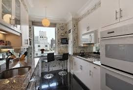 Narrow Kitchen Design Ideas: Long Narrow Kitchen With Dining Area Amazing Pictures