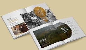 undp coffee table book 4