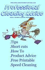 159 Best Business Images On Pinterest Cleaning Business House