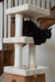 best designer cat trees images on pinterest  pet furniture