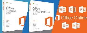Office Standard Vs Office Professional Vs Office Online