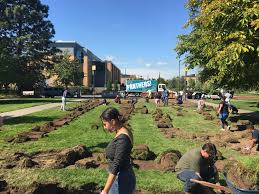 so many volunteers came out to help roll up the sod and get this garden space ready joe culhane for the bridge
