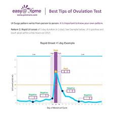 Pregnancy Day By Day Chart Pin On Getting Pregnant With Premom The Ovulation Calculator