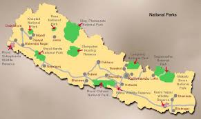 Image result for about chitwan