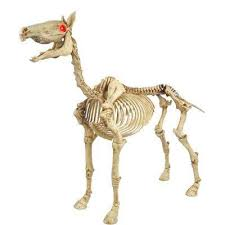 Small Picture Horse Indoor Halloween Decor Halloween Decorations The Home
