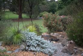 Small Picture Mallee Design native Australian garden design Servicing North
