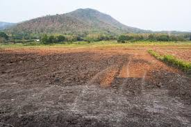The barren field stock photo. Image of asia, barren, burned - 39817792
