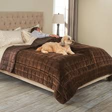 the bed protecting pet cover