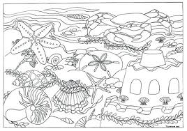 Small Picture Items similar to Printable Beach Seashells Scene Coloring Page