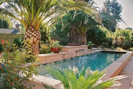 palm tree near pool retaining wall pool eclectic with clay tile flooring contemporary fire pits