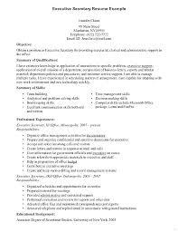 Sample Law School Resume Lovely Law School Application Resume Sample