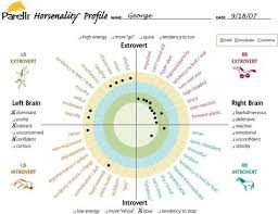 Horsenality Left Brain Introvert Chart This Is My Other
