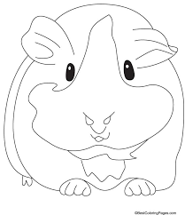 Small Picture Best Guinea Pig Coloring Pages 42 In Coloring for Kids with Guinea