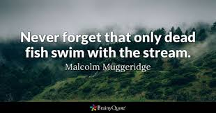Swim Quotes BrainyQuote Custom Swim Quotes
