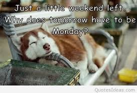 tomorrow is monday again quotes sayings pictures
