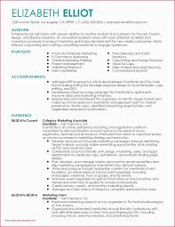 Web Developer Resume Sample New 43 Web Developer Summary Resume 7k