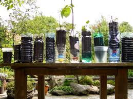 Tree Saplings Recycled Bottles Pots Trays Willem Van Cotthem