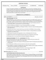 Magnificent Copy A Good Resume Embellishment Resume Ideas