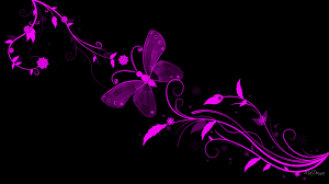 Pink And Black Wallpaper For Bedroom Pink Butterfly And Wallpapers For Gt Black Pink Butterfly