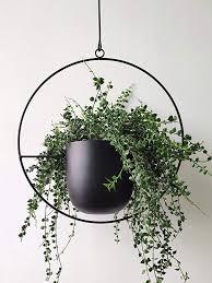 metal plant hangers hanging planters