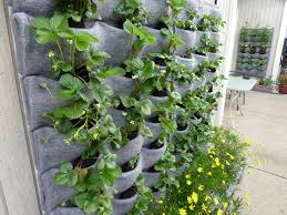 Wall Planters Ikea Ergonomic Wall Mounted Planters Indoor Cube Wall Planters Hanging