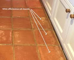 terracotta floor with efflorescence in lymington before enlarged