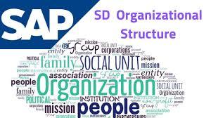 Sap Sd Organizational Structure Flow Chart Sap Sd Organizational Structure Complete Guide Avas