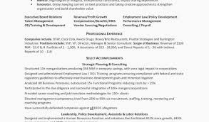It Director Resume Examples Art Director Resume Examples Resume