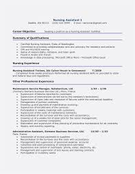 Great Resume Format Adorable Latest Resume Format Fresh Great Resume Format In Word Poureux
