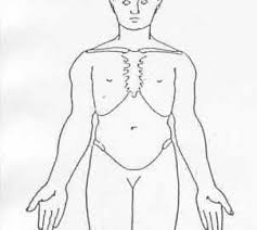 Body Chart Physical Therapy Physical Therapy Articles And Resources Physical Therapy Web