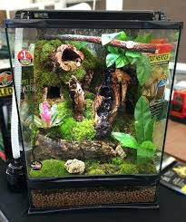 this zoo med terrarium cork flats can be used to create holding wall for waterfall diy mini terrarium tropical photo by waterfall diy small