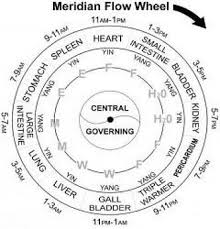 Meridians In Traditional Chinese Medicine Amc Miami Florida