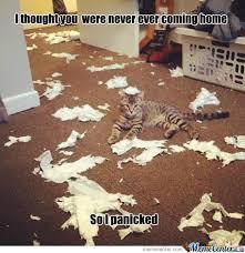 So I Panicked by 4e674c - Meme Center via Relatably.com