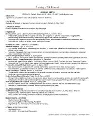Resume Software Engineering Examples Professional Skills To Put