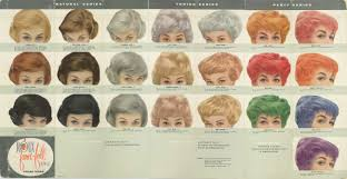 53 Clairol Professional Hair Color Chart